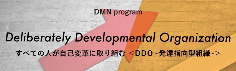 dmn Program